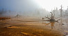 Cold Morning Steam<br /> Geothermal hot spring with runoff, Yellowstone National Park, Wyoming