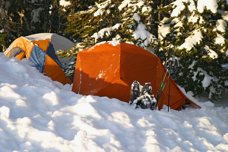 A campground site in the snow with a tent partially covered by snow from the night before. This tent is tucked into the trees to provide some partial shelter from the snow.