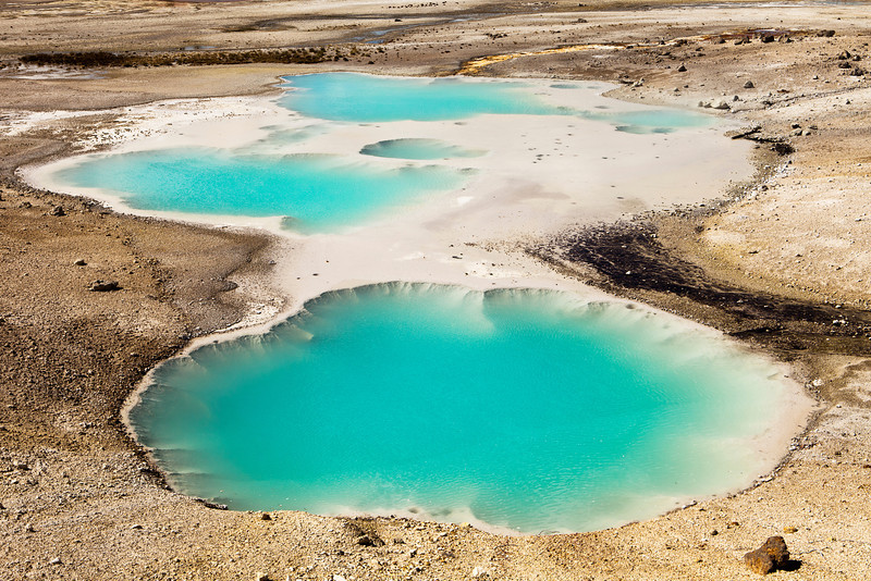 Two hot springs in the Norris Geyser Basin in Yellowstone National Park show a bright blue color.