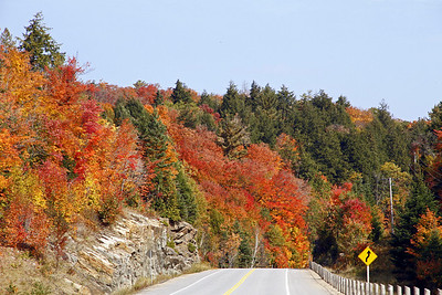 Autumn foilage looking east along Highway 60