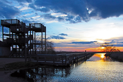 Sunrise at the observation tower at Point Pelee National Park