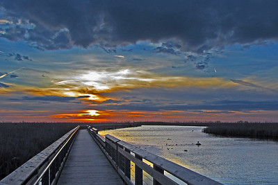 Sunrise at Point Pelee's marsh boardwalk
