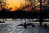 Sunset on the pond at Lafreniere Park Bird Sanctuary, Metairie, LA
