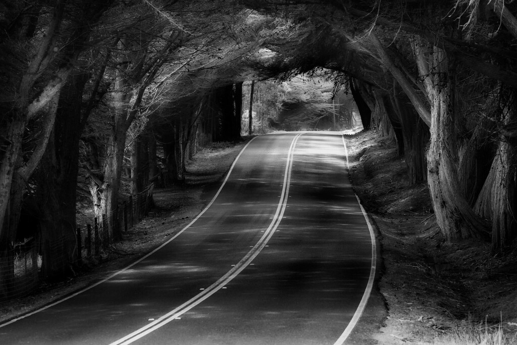 A tunnel of shadows and light. California.<br /> © Douglas Remington - Ethereal Light Photography, LLC.  All Rights Reserved. Do not copy or download.