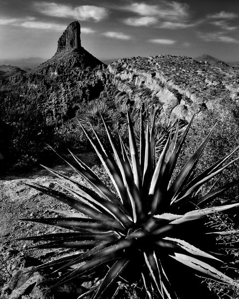 Weavers Needle, Superstition Mountains, Arizona<br /> © Douglas Remington - Ethereal Light Photography, LLC.  All Rights Reserved. Do not copy or download.