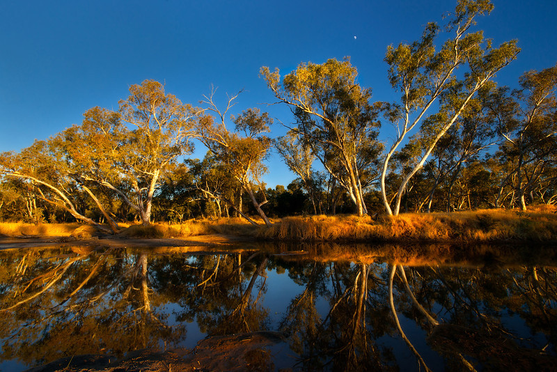 © Douglas Remington - Ethereal Light Photography, LLC. All Rights Reserved. Do not copy or download.<br /> <br /> <br /> The larapinta river, also called the Finke river, is the oldest river on earth. It has not changed course in over 350 million years.