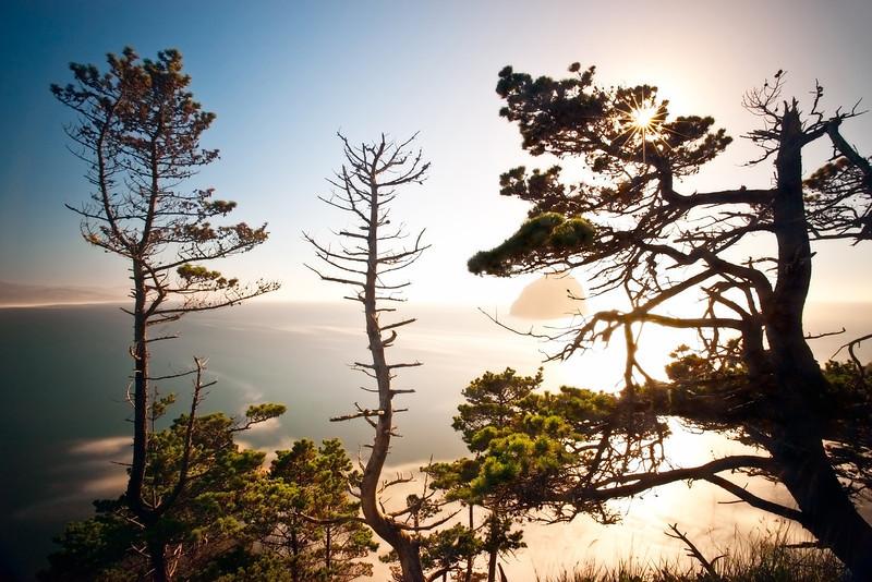 Cape Kiwanda Sunstar, Oregon Coast<br /> © Douglas Remington - Ethereal Light Photography, LLC.  All Rights Reserved. Do not copy or download.