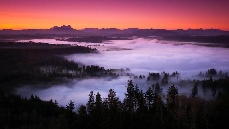 Saddle Mountain mist