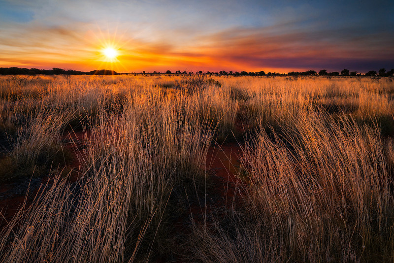 © Douglas Remington - Ethereal Light Photography, LLC. All Rights Reserved. Do not copy or download.<br /> <br /> Sunset, spinifex, and bush fire. Uluru-Kata Tjuta national park.
