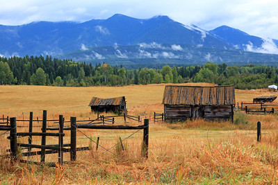 Old Barns near Kalispell Montana