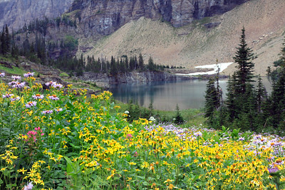 Lower Lake Below Iceberg Lake and wildflowers