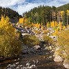 Fall foliage colors in Rocky Mountain National Park
