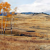 Lamar Valley in Fall