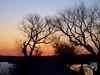 Egret road sunrise<br /> Hagerman