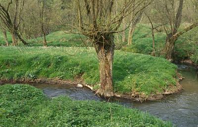 river,riviernrivière,Eupen-Malmedy,Belium,België,Belgique