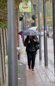 rain,regen,pluits,umbrella,regenscherm,paraplui