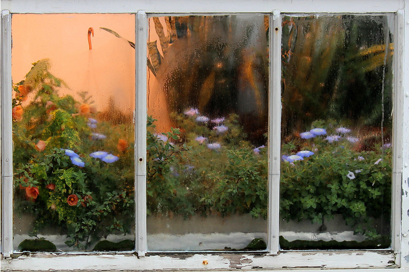 Greenhouse window.
