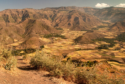 Hundreds of small farms in north central Ethiopia.