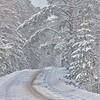 Winter Road #1