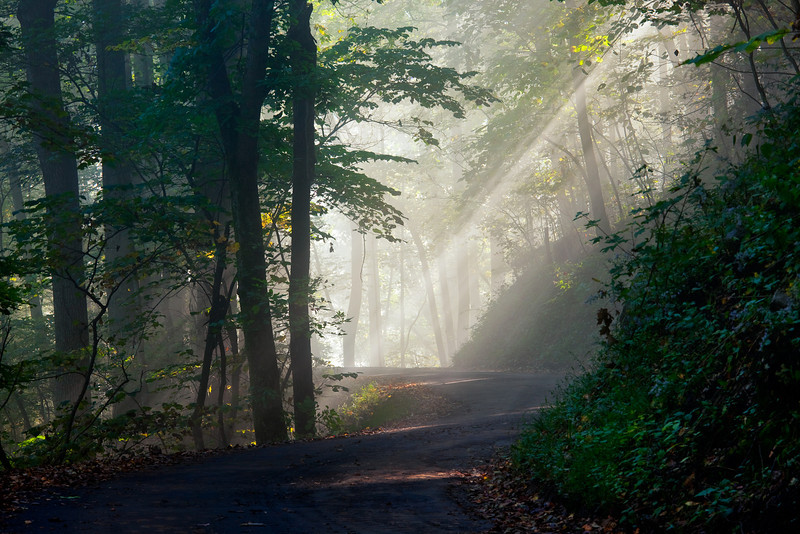 Rich Mountain Road <br /> Great Smoky Mountains NP