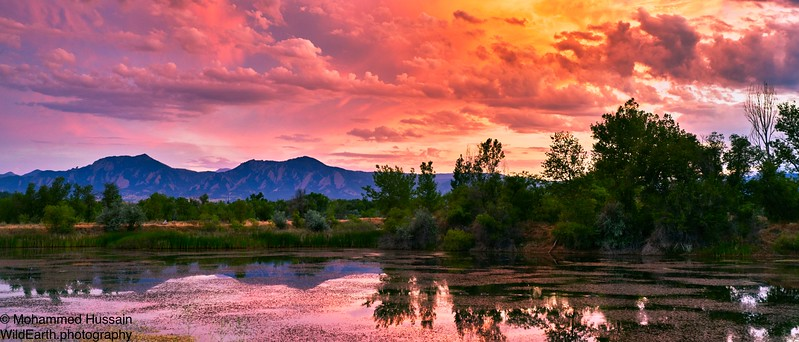 Summer Sunset - Walden Ponds Wildlife Habitat, Boulder