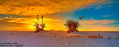 Sunrise Over White Sands National Monument, Alamogordo, NM