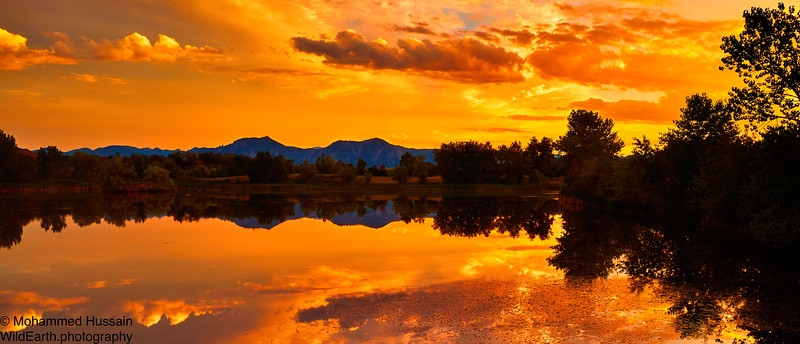 Summer Boulder Sunset, Walden Ponds Wildlife Habitat, Boulder