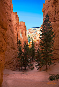 bryce_sentries_trail_2_jim