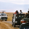 No less than 12 cars packed with even more tourists had stopped to admire this lioness in the Ngorongoro crater in tanzania in july 2004, a lioness who must have been wondering what all the fuss was about!....