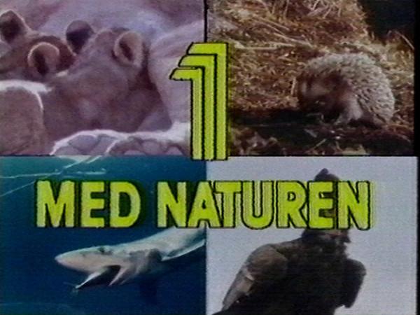 Intervjuet ble gjort i Bristol i anledning Wildscreen'86 den 8-14 okt. 1986.