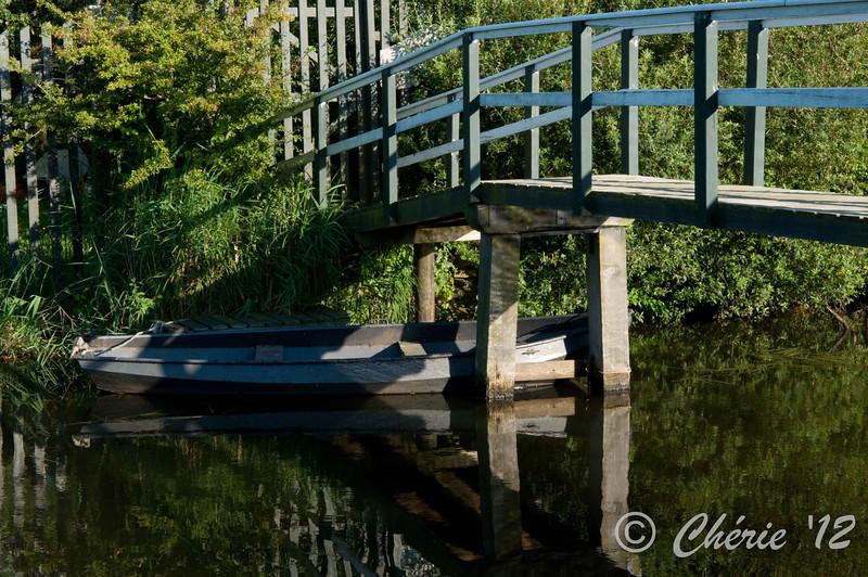 Friesland-4315