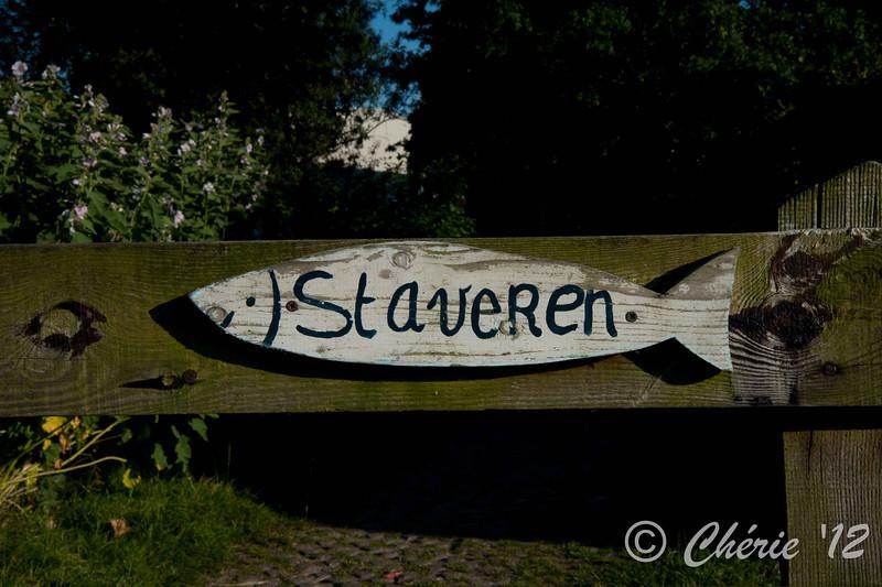 Friesland-4312