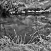 Sneeuw_Beek_May444_6_HDR2_BW