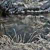 Sneeuw_Beek_May444_6_HDR2