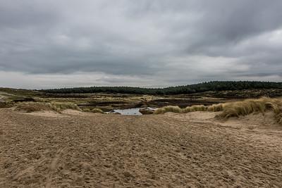 Schoorlse duinen Boswachterspad