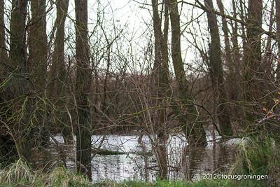 nederland 2012, lauwersoog, lauwersmeer, n361