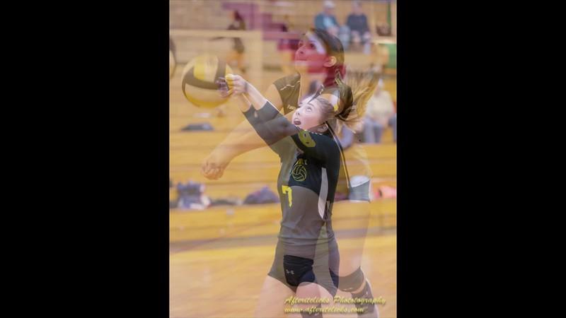 Varsity Volleyball 2017-18