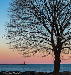 The Tree and Whaleback Lighthouse