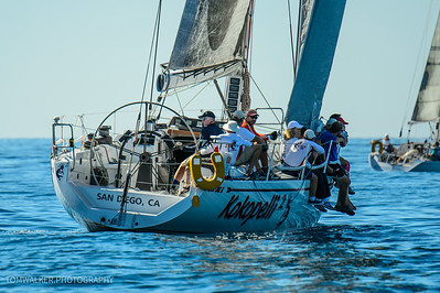 Rum Runner Regatta (360 of 373)
