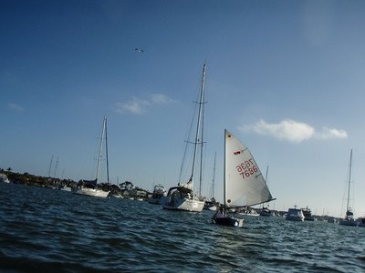 2013 Balboa Yacht Club Twilight Series Regatta