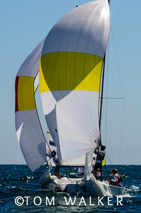 balboa yacht club goc cup - tom walker photography