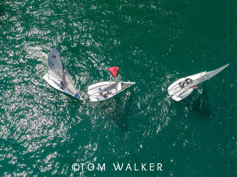 Wednesday 2019 Viper 640 World Championships, Alamitos Bay Yacht Club, Los Alamitos, California | Tom Walker Photography