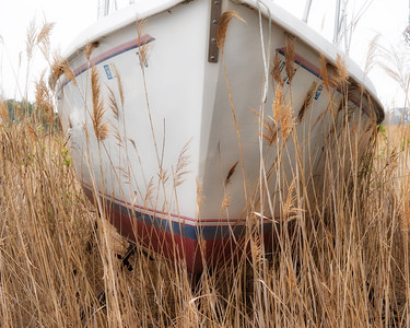 Boat with Grass 540