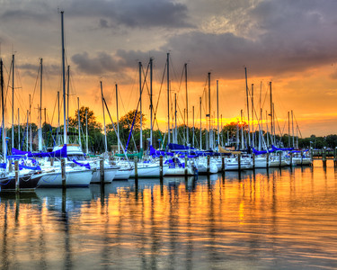 Marina Reflections 8699