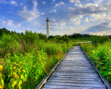 Lighthouse boardwalk 8331
