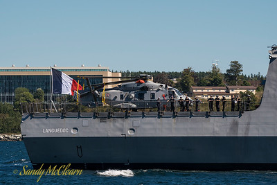 FNS LANGUEDOC