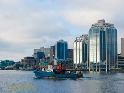 "Fishing boat ""Tenacity I"" passes in front of the Purdy's Wharf office towers in Halifax, Nova Scotia."