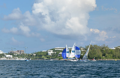 Argo Group Gold Cup 2012