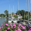 The Sandusky Sailing Club...as they always do..come each Labor Day weekend...29 beautiful sailboats this year.