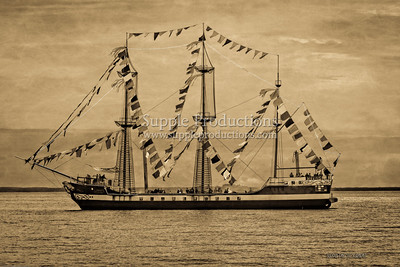 20140120_Gasparilla_pirate_ship_1062-Edit-Edit-Edit